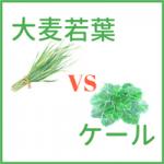 【大麦若葉とケール】栄養価の違いは?効果別に徹底比較!
